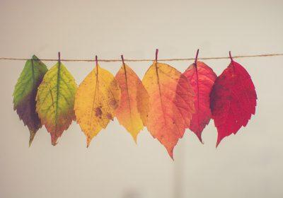 10 idées créatives de bricolage automne